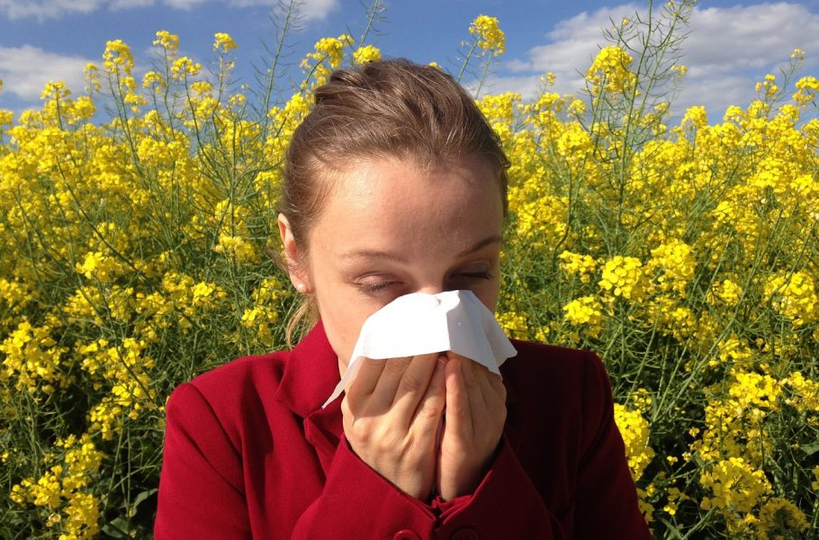 STOP ALERGIJI: bez šmrckanja ovog proleća