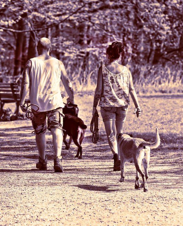 Svakodnevno šetanje – zdravlje i uživanje